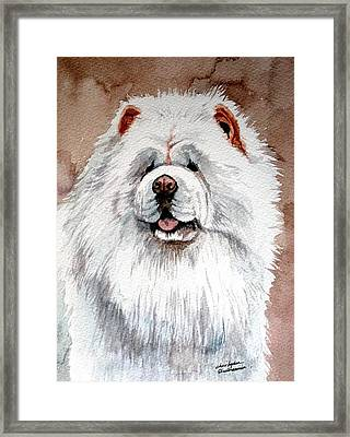 White Chow Chow Framed Print by Christopher Shellhammer