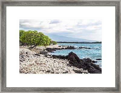 White Coral Coast Framed Print