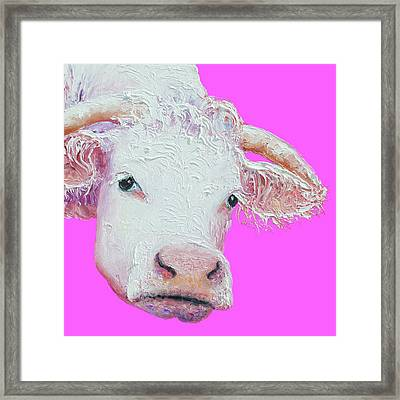 White Cow On Pink Background Framed Print by Jan Matson