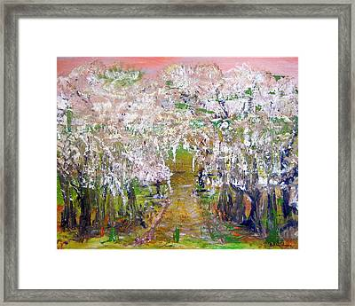 White Delight Framed Print