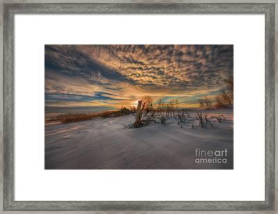 White Desert Of Canada Framed Print
