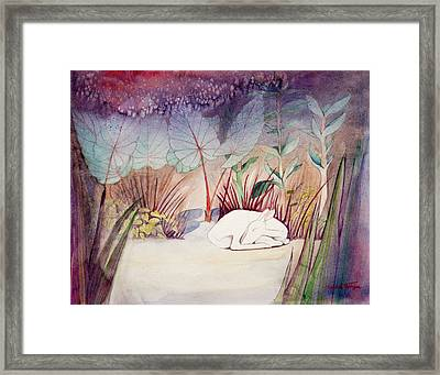 White Doe Dreaming Framed Print