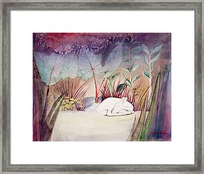 White Doe Dreaming Framed Print
