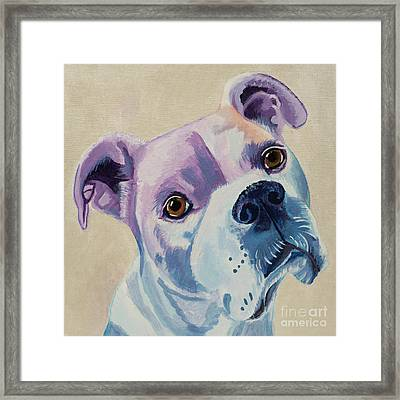 White Dog Portrait Framed Print by Robyn Saunders