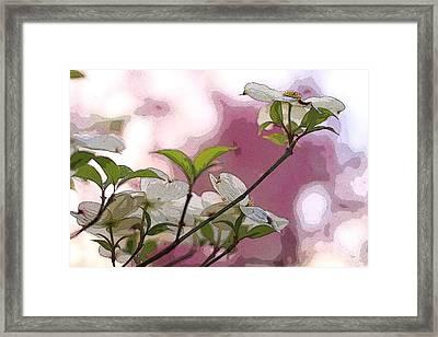 White Dogwood Flowers Framed Print