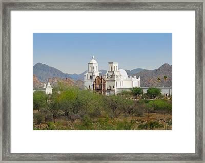 White Dove Of The Desert Framed Print