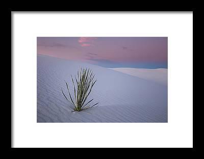 Nm Framed Prints