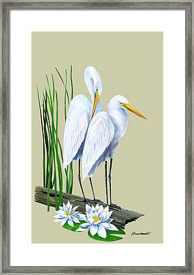 White Egrets And White Lillies Framed Print by Kevin Brant