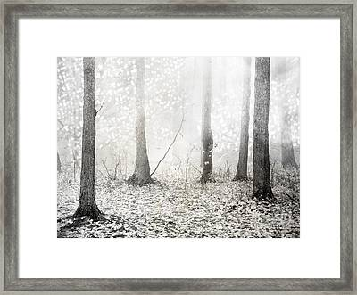 White Ethereal Mystical Trees Woodlands - Surreal White Fantasy Fairytale Nature Trees Framed Print by Kathy Fornal