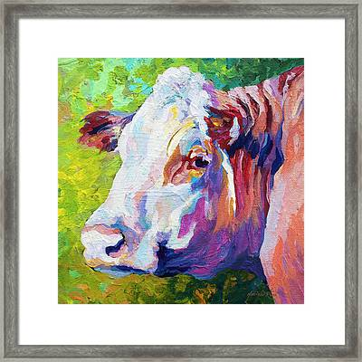 White Face Cow Framed Print by Marion Rose