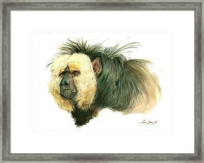White Faced Saki Monkey Framed Print