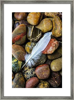 White Feather On River Stones Framed Print by Garry Gay