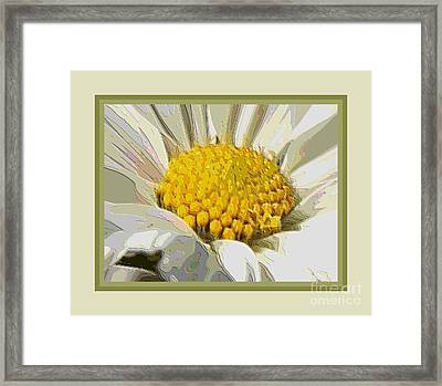 White Flower Abstract With Border Framed Print by Carol Groenen
