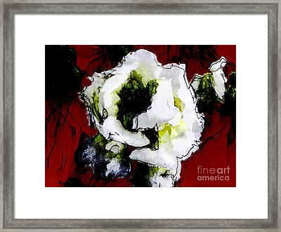 White Flower On Red Background Framed Print