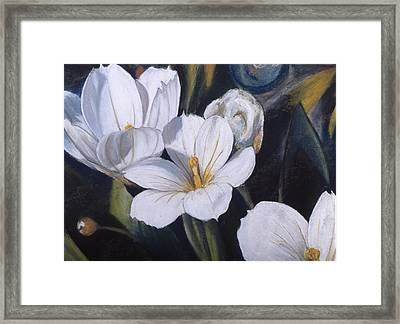 White Flower Study Framed Print by Victoria Heryet