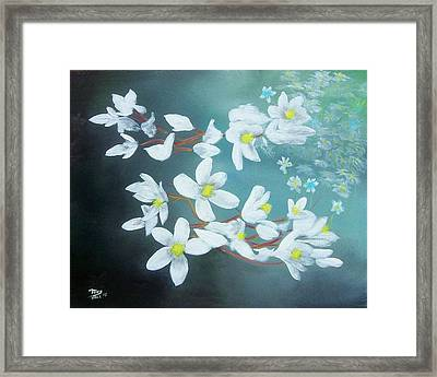 White Flowers Framed Print by Tony Rodriguez