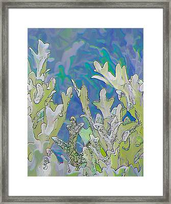 White Forest 3 Framed Print by Michael Taggart II