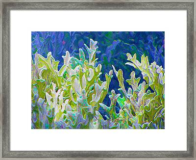 White Forest 6 Framed Print by Michael Taggart II