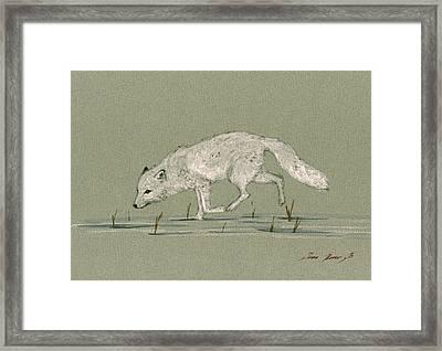 White Fox Walking Framed Print by Juan  Bosco