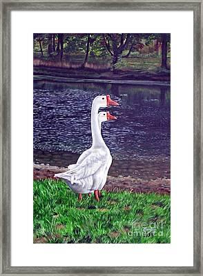 White Geese At Dusk Framed Print