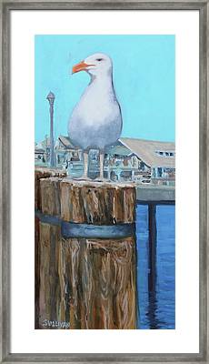 White Gull Framed Print