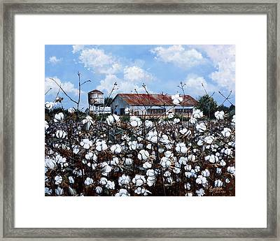 White Harvest Framed Print by Cynara Shelton