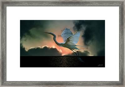 White Heron At Sundown Framed Print