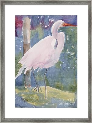 White Heron Framed Print by Linda Rupard