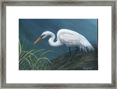 White Heron Framed Print by Peggy Conyers