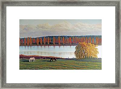 Framed Print featuring the painting White Horse Black Horse by Laurie Stewart