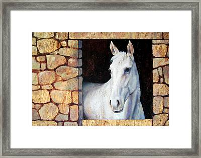 White Horse1 Framed Print by Farhan Abouassali