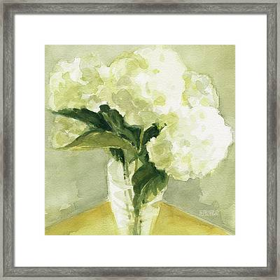 White Hydrangeas Morning Light Framed Print