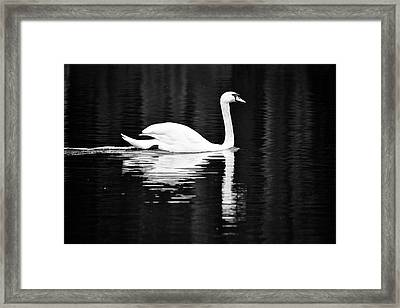 White In Black  Framed Print by Teemu Tretjakov