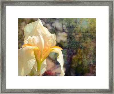 White Iris Framed Print by Bellesouth Studio