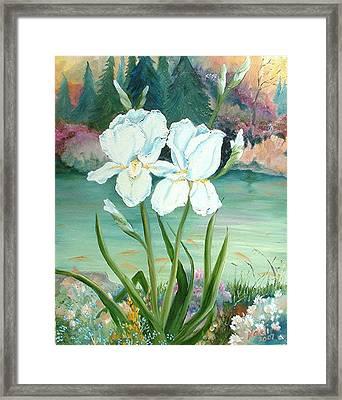 White Iris Love Framed Print