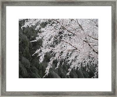 White Lace Framed Print by Jeanette Oberholtzer