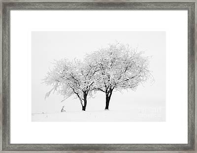 White Lace Framed Print