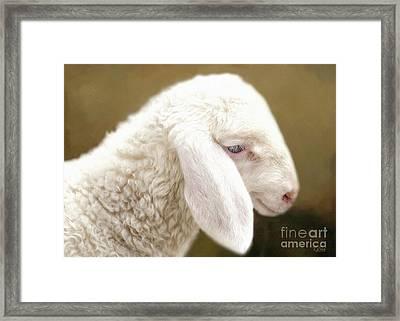 White Lashes Framed Print