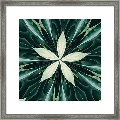 White Leaves In A Green Forest Kaleidoscope Framed Print