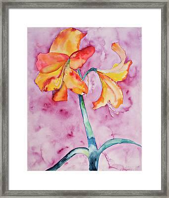 White Light Bloom Framed Print by Ruth Feldman