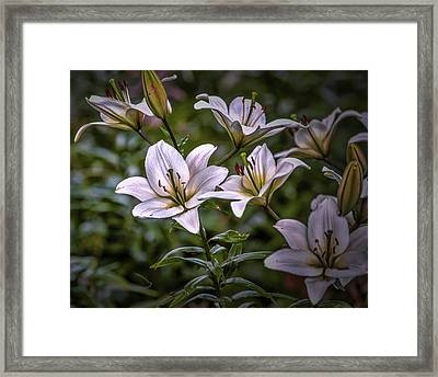 Framed Print featuring the photograph White Lilies #g5 by Leif Sohlman