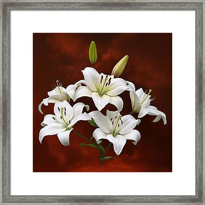 White Lilies On Red Framed Print by Jane McIlroy