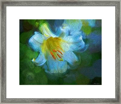White Lily Obscure Framed Print