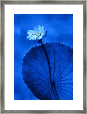 White Lotus Framed Print by Thanh Thuy Nguyen