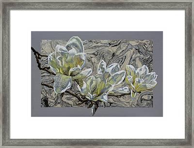 White Magnolias On Marbled Paper Framed Print