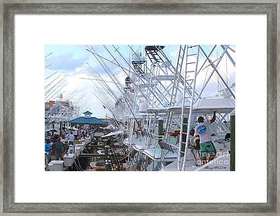 White Marlin Open Docks Framed Print