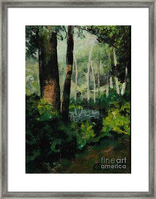 White Mountain Woods Framed Print