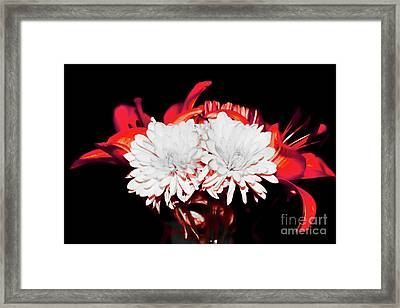 White Mums And Red Lilies Framed Print