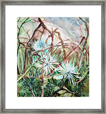 White Mums Framed Print by Mindy Newman