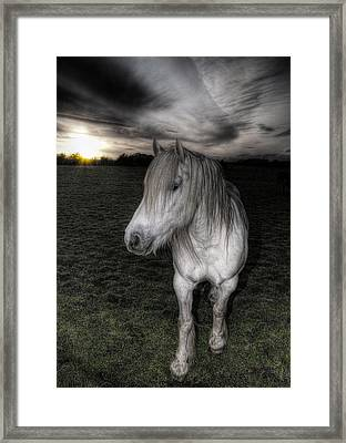 White Night Framed Print by Fraser Davidson